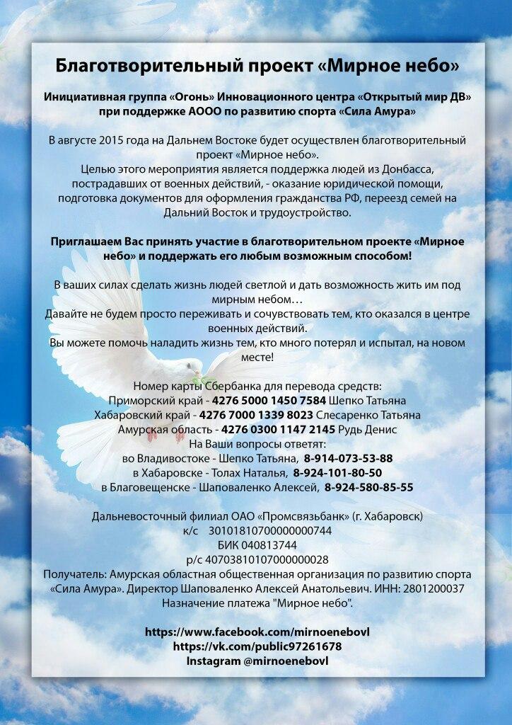 """Благотворительный проект """"Мирное небо"""""""